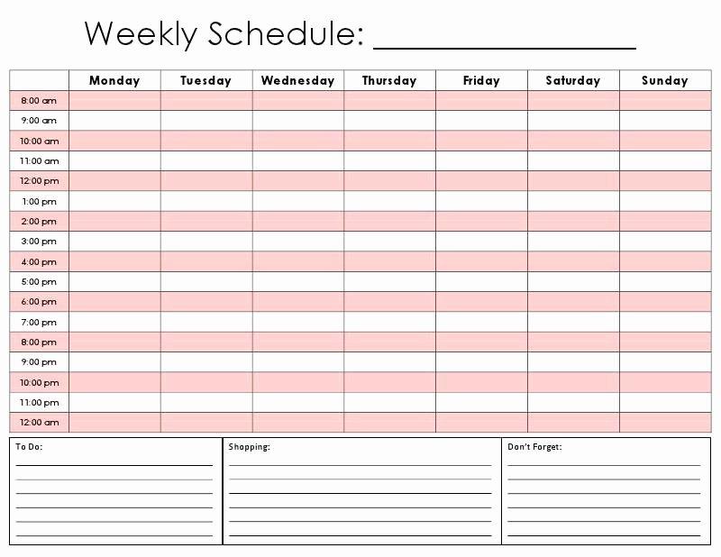 Weekly Schedule Planner Template Luxury 24 Hour Planner Template