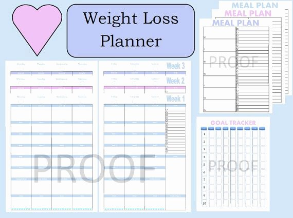 Weight Loss Meal Planner Template Awesome 17 Best Images About 21 Day Fix Printable Sheets On