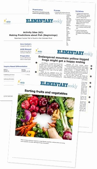 Wicor Lesson Plan Template Unique 1000 Images About Avid Elementary On Pinterest
