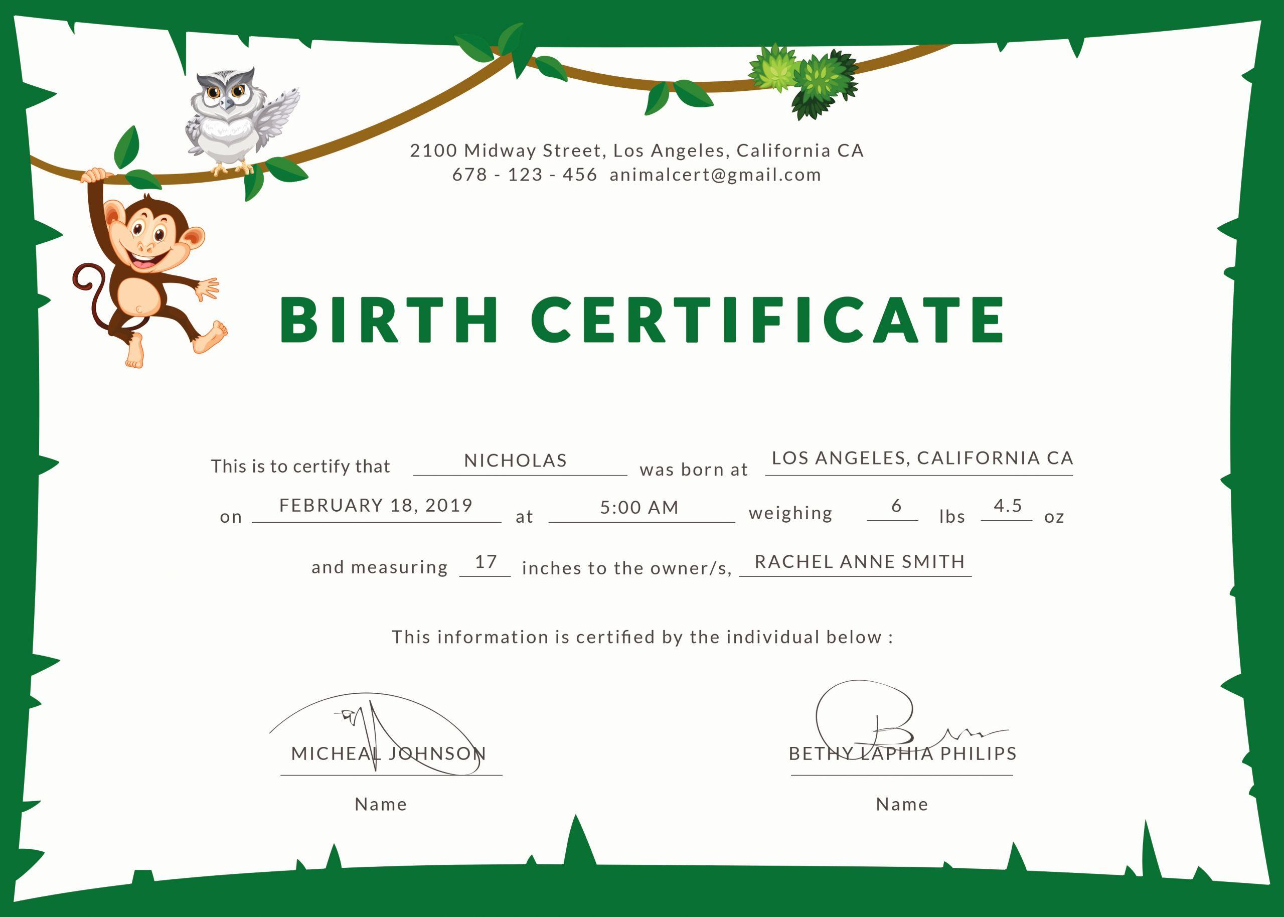 Birth Certificate Template Doc Beautiful Birth Certificate
