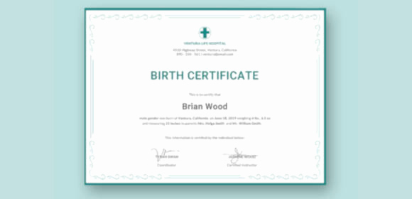 Birth Certificate Template Doc Best Of 12 Sample Birth Certificate Templates Word Psd