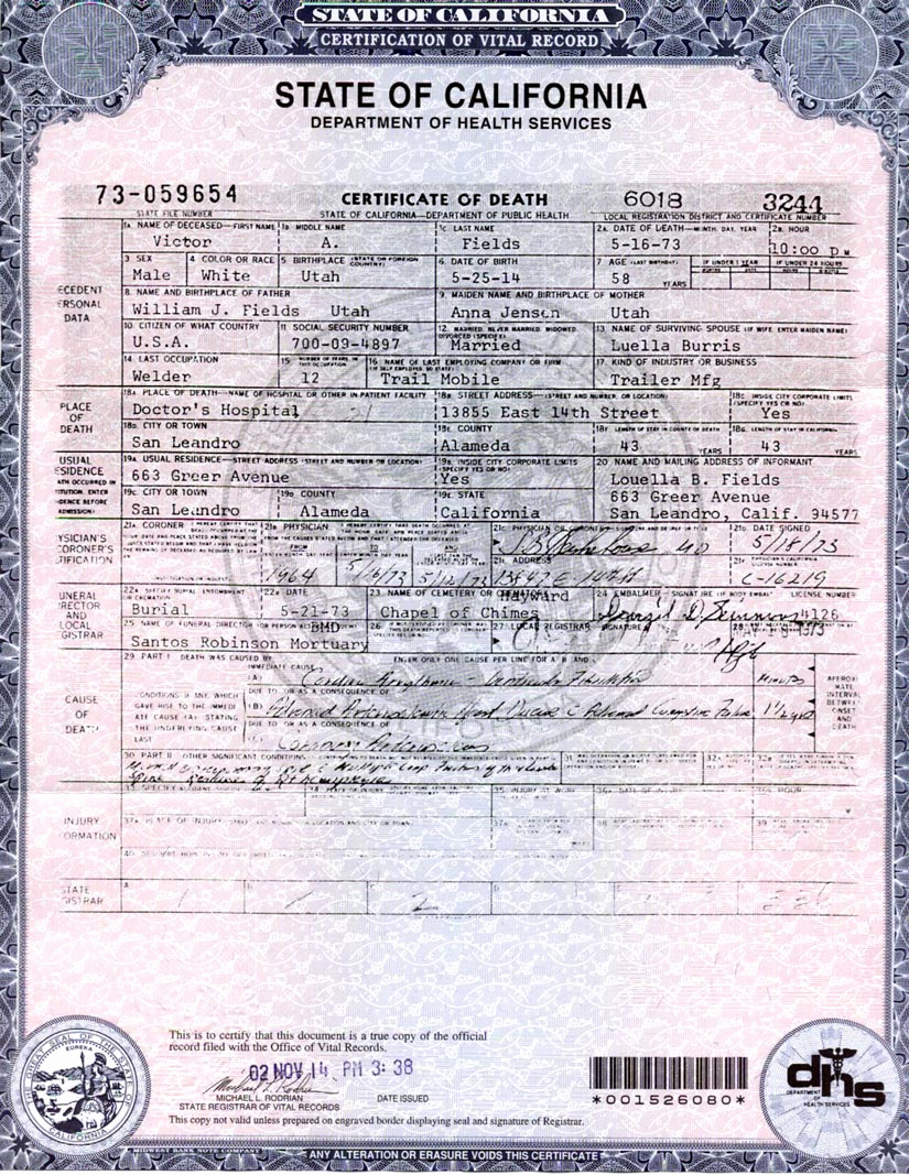 Blank Death Certificate Template Elegant Making A Point – Part 3