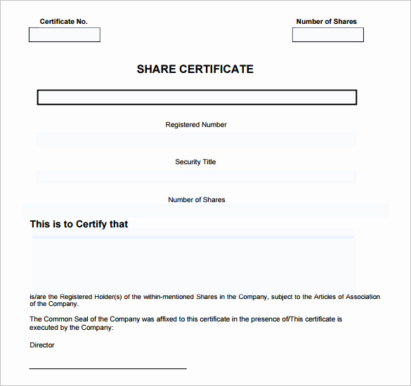Blank Stock Certificate Template Free Luxury 14 Certificate Templates