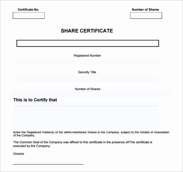Blank Stock Certificate Template Free Luxury 14 Certificate Templates