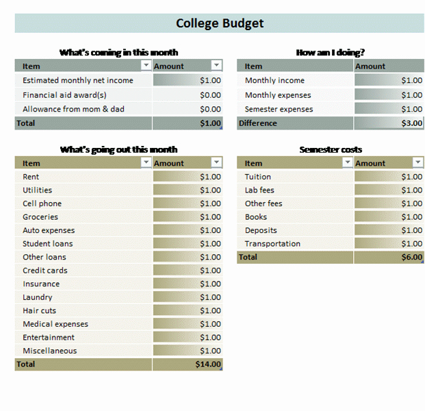 Budget Template for College Students Lovely College Student Bud Templates Fice