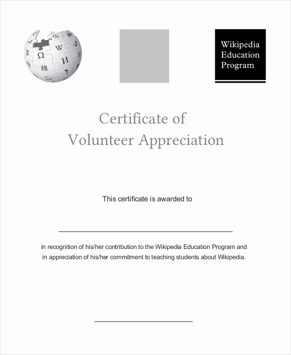 Certificate Of Appreciation Template Powerpoint Beautiful Certificate Of Appreciation 28 Free Pdf Ppt Documents