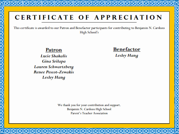 Certificate Of Appreciation Template Powerpoint Beautiful Sample Certificate Of Appreciation Temaplate 12
