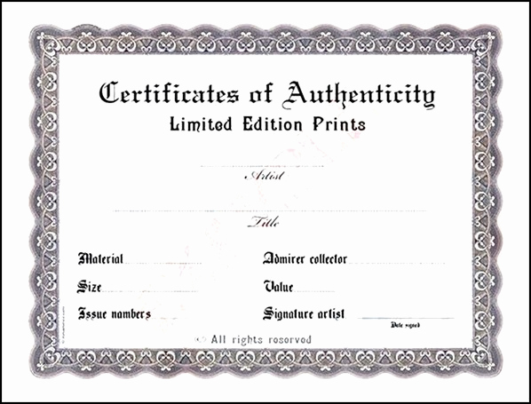 Certificate Of Authenticity Photography Template Awesome Blank Certificate Of Authenticity Sample Templates