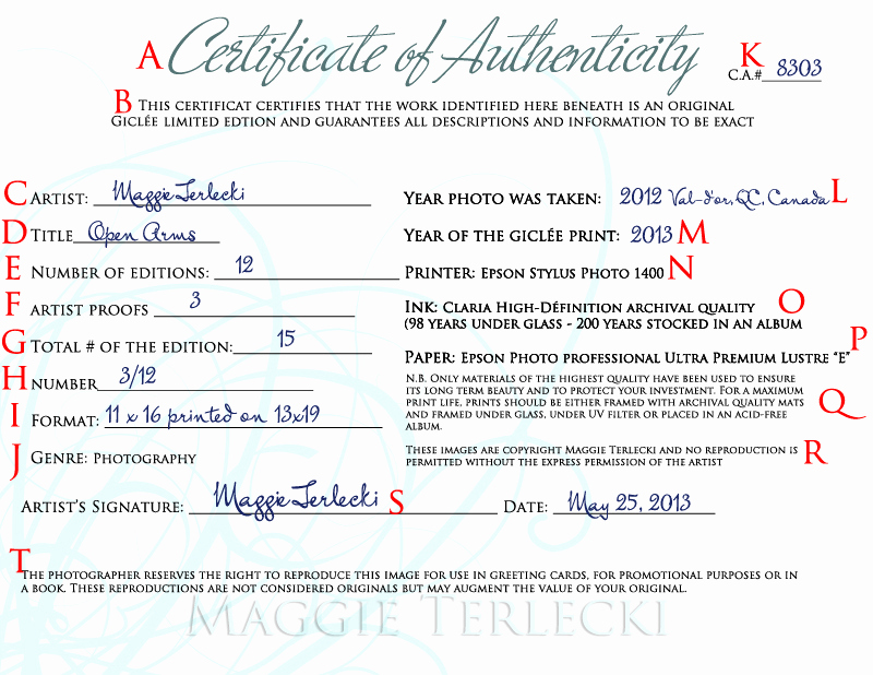 Certificate Of Authenticity Photography Template Inspirational Certificate Authenticity Graphy