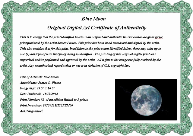 Certificate Of Authenticity Photography Template Luxury Certificate Authenticity Wording – Printable Receipt