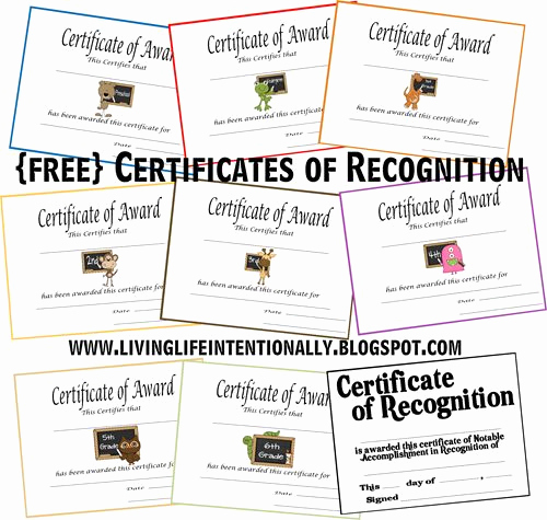 Certificate Of Life Template New 1000 Images About Homeschool Awards and Certificates On