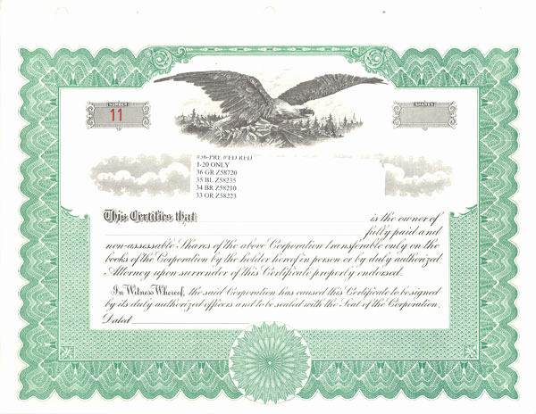 Corporate Stock Certificate Template Word Fresh Blank Stock Certificates Free Printable Documents