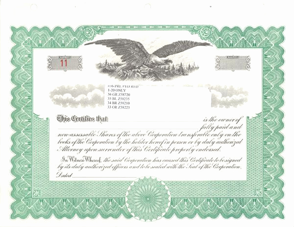 Corporate Stock Certificates Template Free Inspirational Sample Stock Certificate Free Download Printable