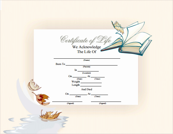 Death Certificate Template Word Awesome Sample Death Certificate Template 7 Download Documents