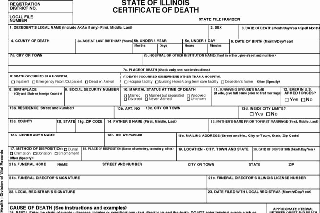 Death Certificate Template Word Lovely Certificate Template