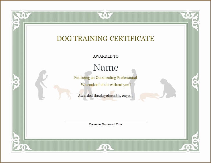 Dog Training Certificate Template Beautiful Dog Training Certificate
