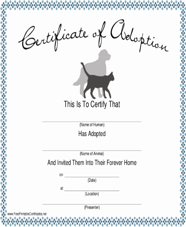 Dog Training Certificate Template Inspirational Dog Certificate Template 13 Pdf Ai Word Psd