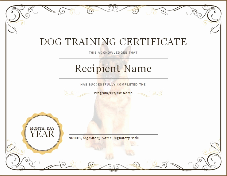 Dog Training Certificate Template Inspirational Dog Training Certificate