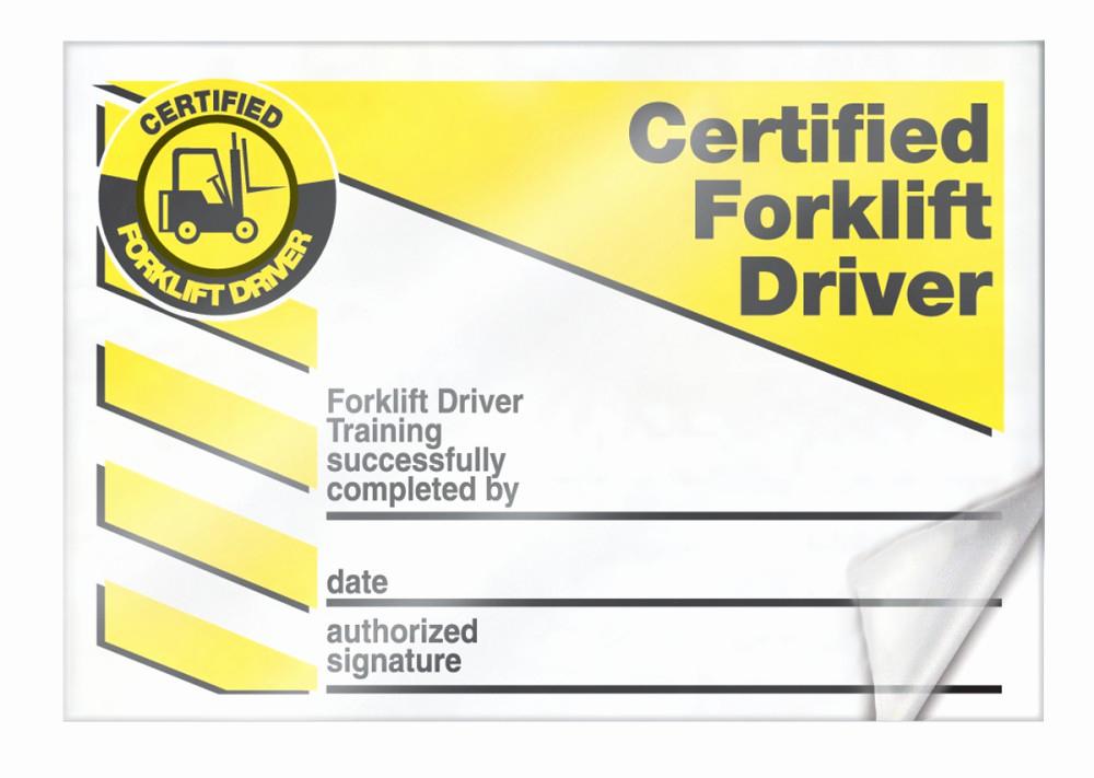 Forklift Certificate Template Free Best Of forklift Certification Cards Lkc230