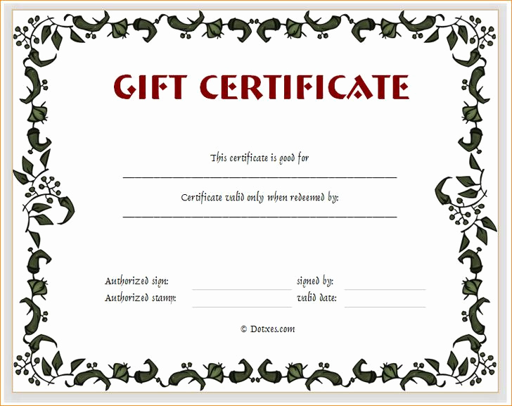 Full Page Gift Certificate Template Fresh 34 Gift Certificate Template Free Download