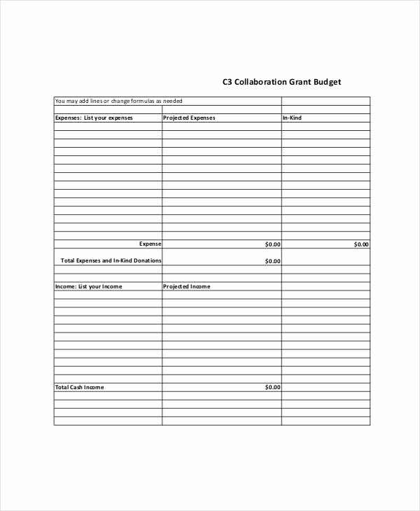 Grant Budget Template Excel New Grant Bud Template 10 Free Pdf Word Documents