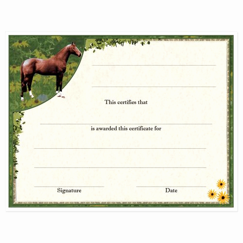 Horseback Riding Gift Certificate Template Awesome Award Certificates Full Horse Design