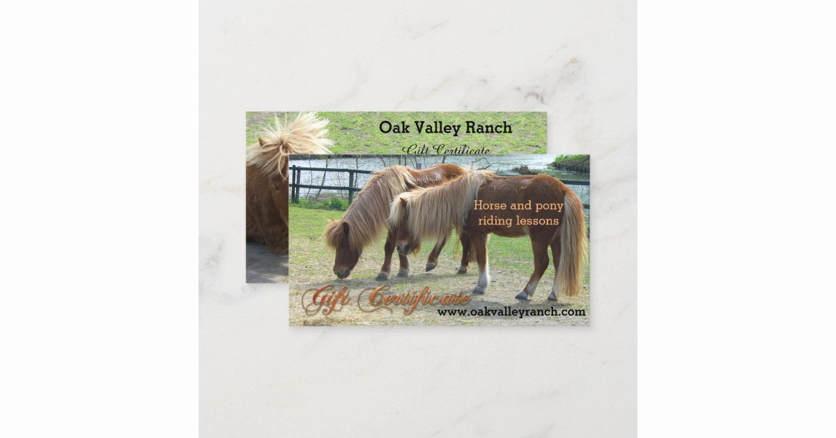 Horseback Riding Gift Certificate Template Elegant Horse Riding Lessons Gift Certificate Template
