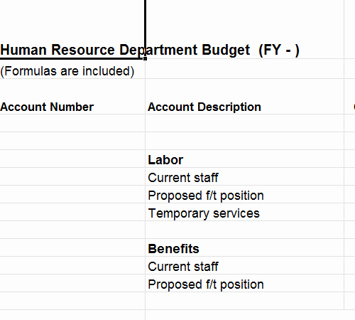 Human Resource Budget Template Awesome Human Resource Bud Template