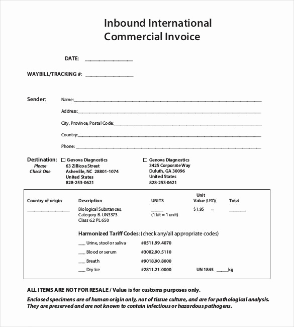 International Commercial Invoice Template Word Fresh 38 Mercial Invoice Templates Word Excel Pdf Ai