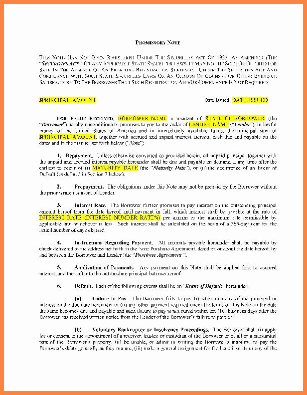 International Promissory Note Template Luxury 10 Loan Agreement Between Family Members Template