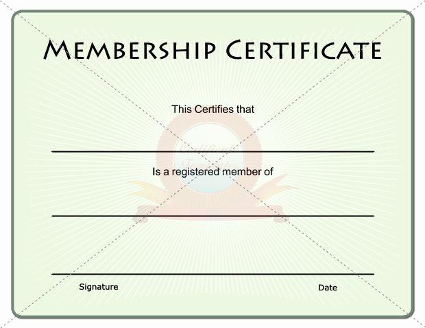 Membership Certificate Llc Template Inspirational Membership Certificate
