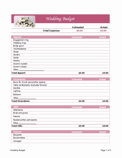 Ms Office Budget Template Unique Microsoft Office Templates and Microsoft On Pinterest