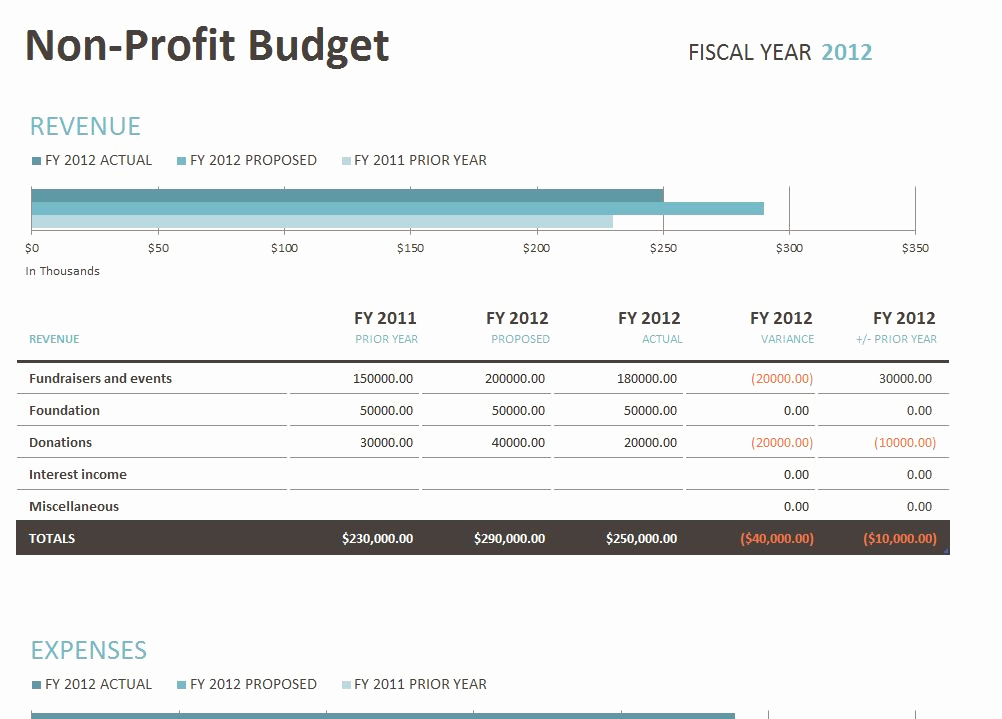 Non Profit organization Budget Template Beautiful Non Profit Bud Template