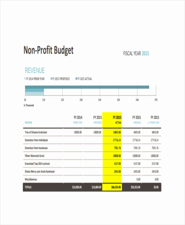 Nonprofit Program Budget Template Fresh 11 Nonprofit Bud Templates Word Pdf Excel