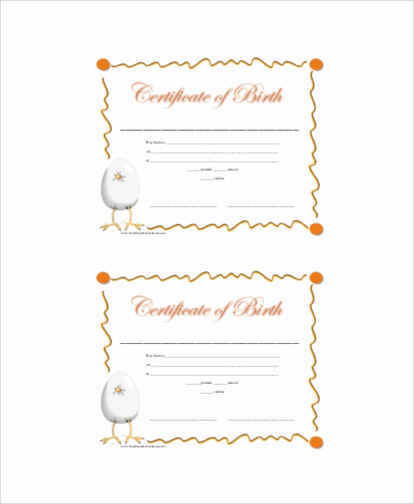 Old Birth Certificate Template New Free 12 Sample Birth Certificates In Ms Word