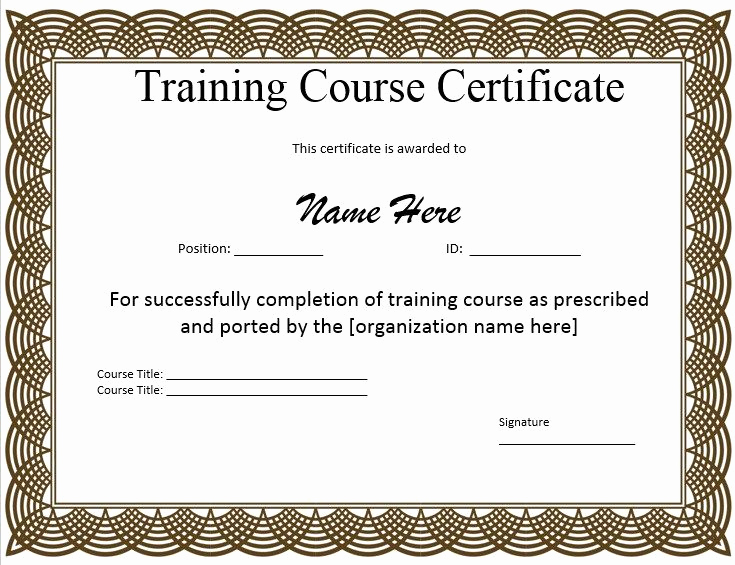 Pdf Certificate Template Free Lovely 10 Training Certificate Templates