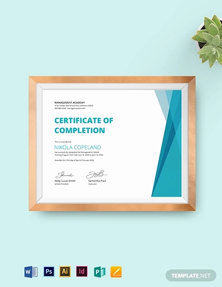 Training Certificate Template Doc Awesome 29 Training Certificate Templates Doc Psd Ai