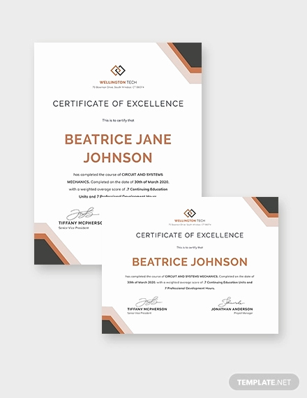 Training Certificate Template Doc Fresh 29 Training Certificate Templates Doc Psd Ai