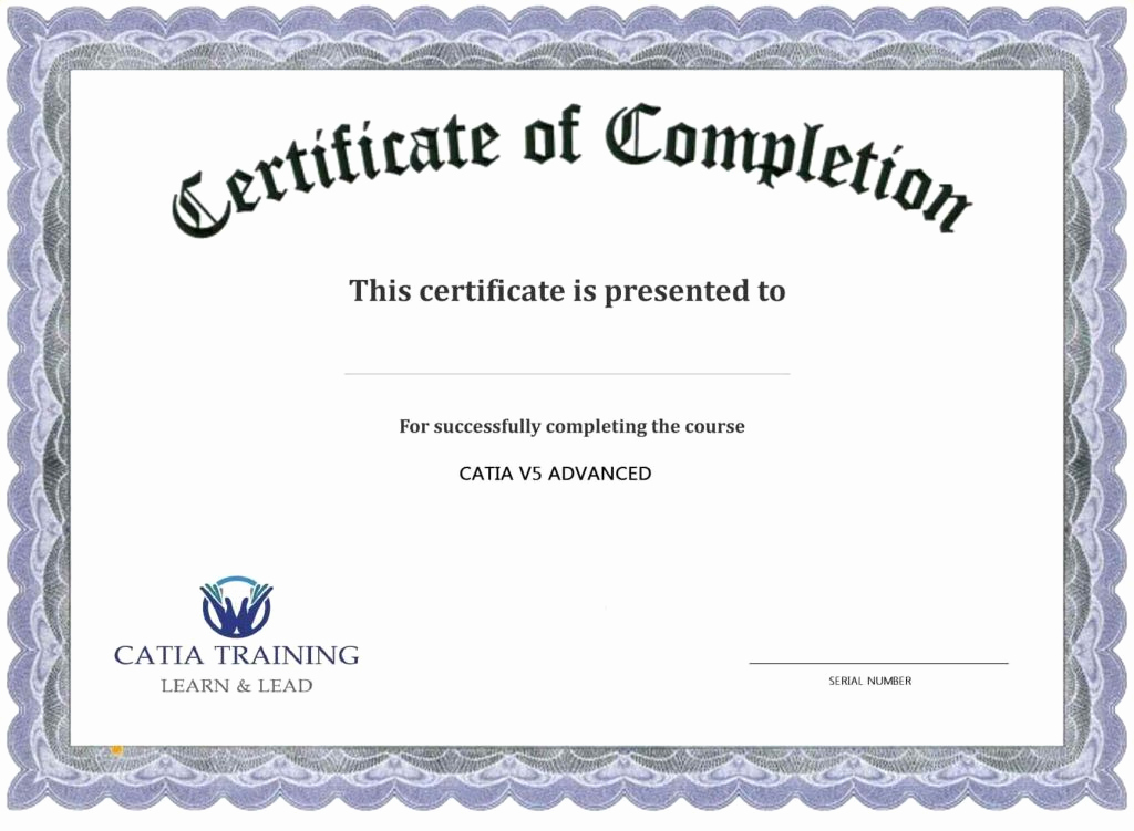 Training Certificate Template Doc Lovely Certificate Training Pletion Template Template