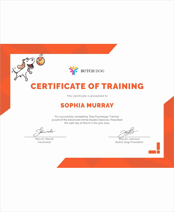 Training Certificate Template Doc New Certificate Template 45 Free Printable Word Excel Pdf