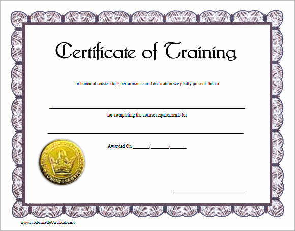 Training Certificate Template Free Download Fresh 30 Training Certificate Templates – Samples Examples format