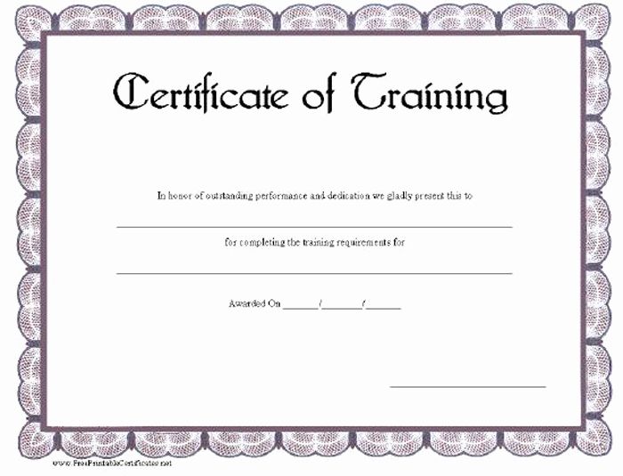 Training Certificate Template Free Download New 15 Training Certificate Templates Free Download Designyep
