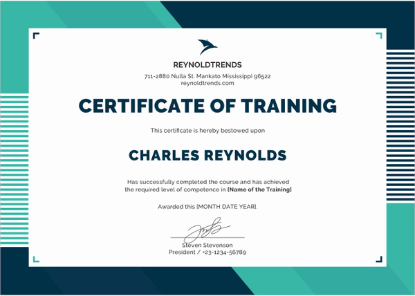 Training Certificate Template Free Download New Word Certificate Template 53 Free Download Samples
